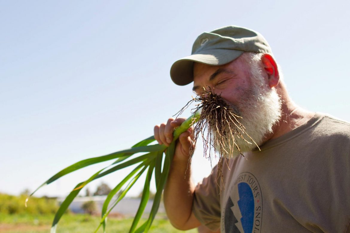 Dr. Andrew Weil, Scholar of the Natural Mystic • High Times