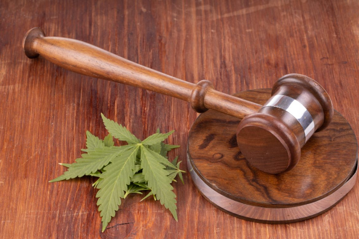 NORML Writes Open Letter Condemning Cannabis Prohibition As Public Health Crisis • High Times